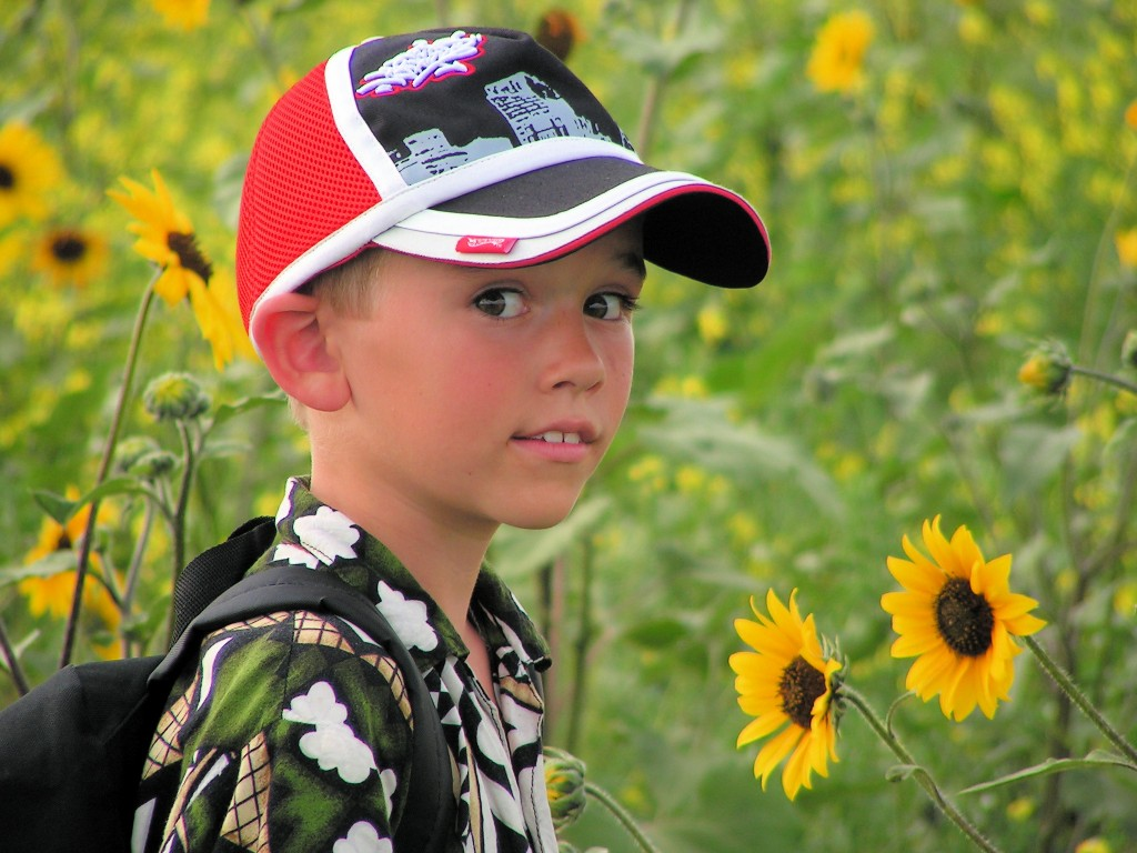A boy in a field of sunflowers.