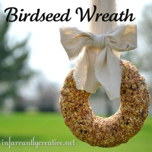 birdseed-wreath_thumb